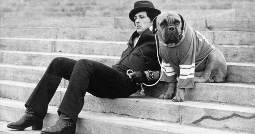 Sylvester Stallone's Dog